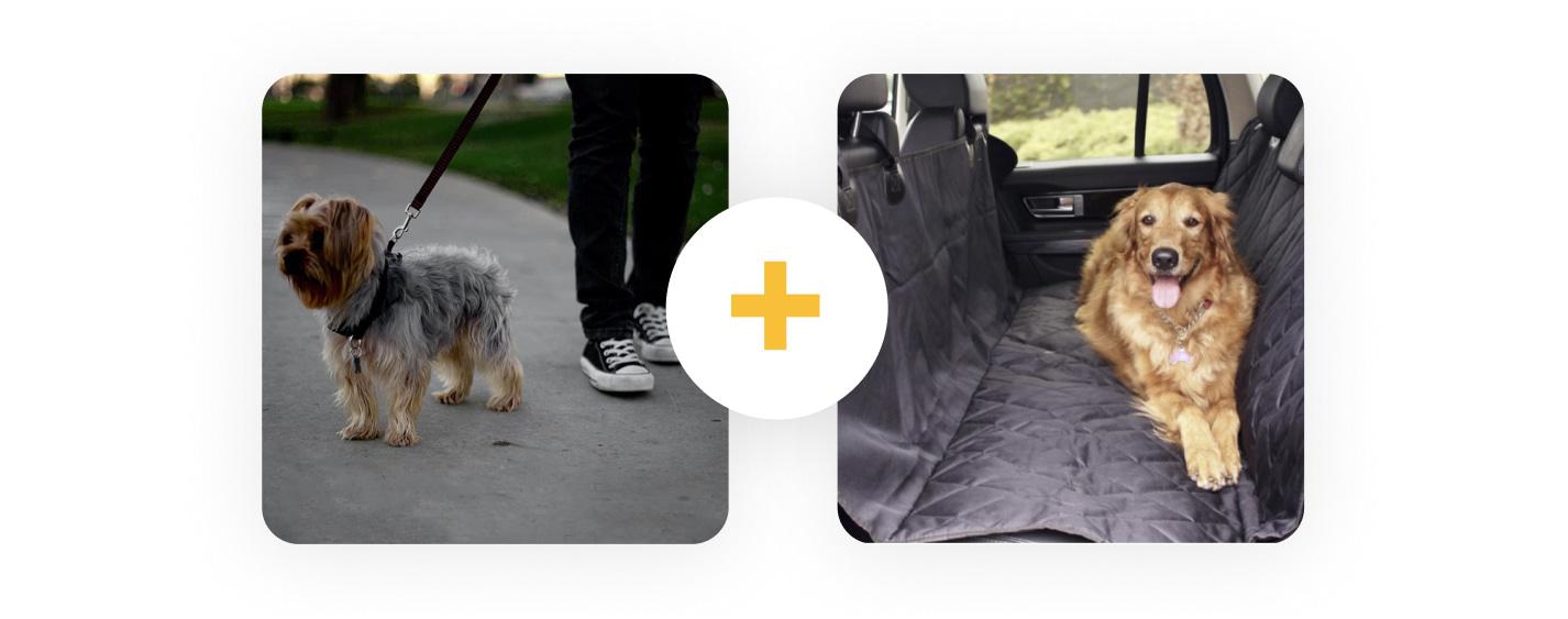 A pet products bundle